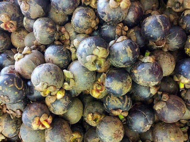 Mangosteen And The Benefits Of It To Your Body