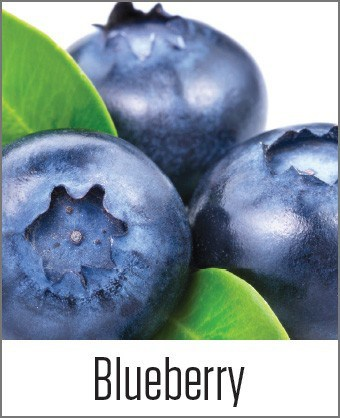 Blueberry in MOA
