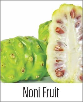 Noni Fruit in MOA