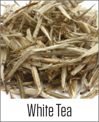 White Tea in MOA