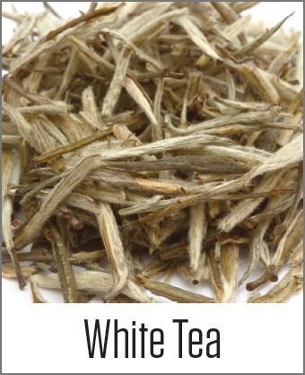 White Tea in MOA