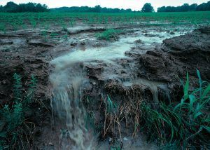 soilpollution