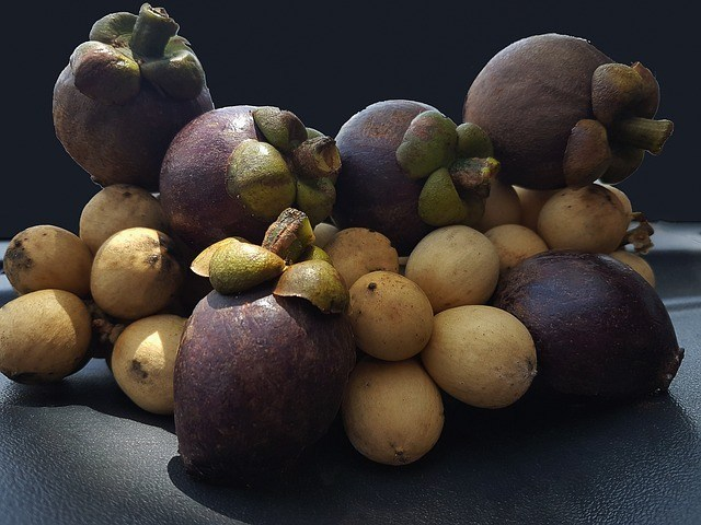 MANGOSTEEN: Miracles from the Queen of Fruits