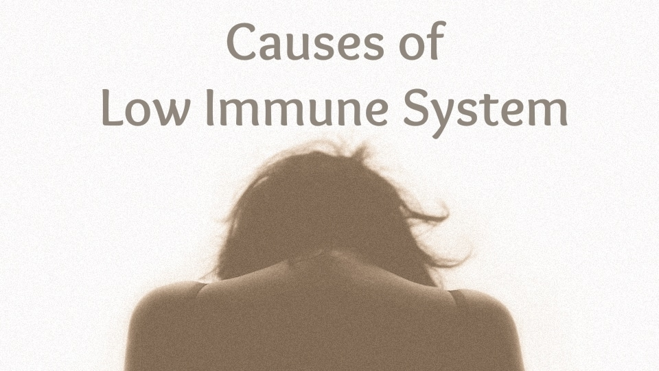 low immune system - moa